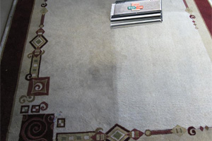 We offer area rug cleaning along with our other dry carpet cleaning services.
