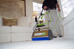 Hains Dry Organic Carpet Cleaning specialist cleaning a carpet using their specialized cleaning equipment and technique.