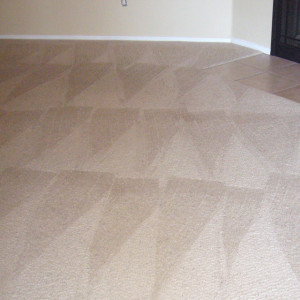 Amarillo dry carpet cleaning - dry carpet cleaning after