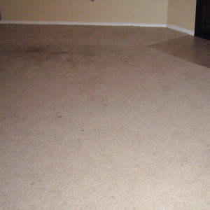 Amarillo dry carpet cleaning - dry carpet cleaning before