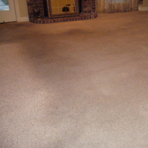 Amarillo dry carpet cleaning - carpet cleaning - dry organic carpet cleaning power before