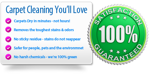 Carpet Cleaning You'll Love - 100 percent satisfaction guaranteed