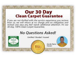 Hains Dry Carpet Cleaning - Carpet Cleaning Guarantee