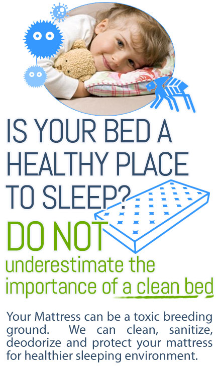 Mattress Cleaning Hains Dry Carpet Cleaning