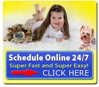 Schedule a cleaning online anytime day or night. Super fast and super easy.